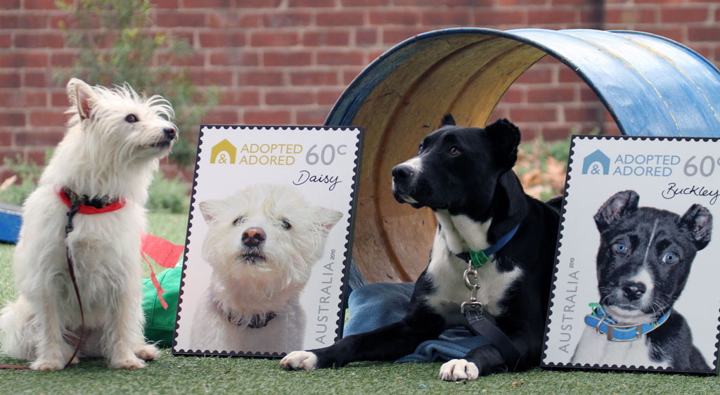 News and Media - 'Adopted and Adored' Australian postage stamps - The Lost Dogs' Home