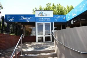 New Vet Clinic 2