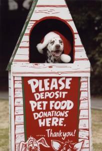 dog_donation_box
