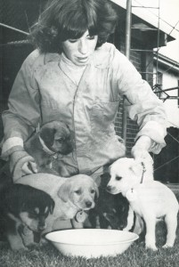 1975 - Feeding time for the puppies at the Home